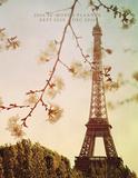 A Parisian Life - 2016 Engagement Calendar Calendars