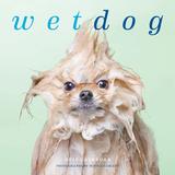 Wet Dog - 2016 Calendar Calendars