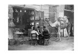 Spieler auf den Straßen von Kairo, 1909 Photographic Print by  Scherl