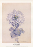 Chrysanthemum Samlertryk af Piet Mondrian