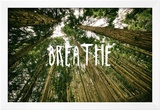 Breathe Prints