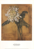 Chrysanthemum Collectable Print by Piet Mondrian