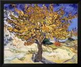 Mulberry Tree, c.1889 Posters by Vincent van Gogh