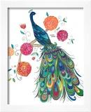 Splendid Peacock Framed Giclee Print by Kim Anderson