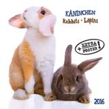 Rabbits - 2016 Calendar Calendars