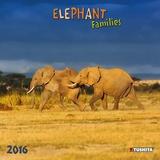 Elephant Families - 2016 Calendar Calendars