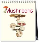 Mushrooms - 2016 Easel Calendar Calendars