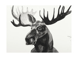 Watercolor Moose Giclee Print by Ben Gordon
