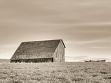 Abandoned Barn 8 Photographic Print by Steve Bisig