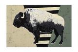 Bisons Impression giclée par  Urban Soule