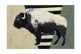 Bison Giclee Print by  Urban Soule