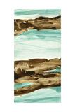Driftwood 3 Giclee Print by Chris Paschke