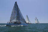 Yachts Compete in Team Sailing Event, California Prints
