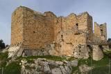 Al-Rabad Castle (Ajloun Castle), 1184-85, Ajloun, Jordan Print
