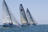 Three Yachts Compete in Team Sailing Event, California Posters