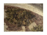 Detail of Fruits and Leaves, from the Last Supper, 1494-98 Kunstdrucke von Leonardo da Vinci