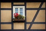 An Dem Fenster Eines Fachwerkhauses Haengt Ein Blumenkasten Mit Geranien Posters