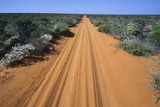 Australia, Tracks Through Desert Photo
