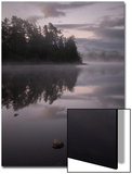 Mist Posters by Doug Chinnery