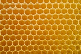 A Honeycomb Filled with Honey Is Pictured at a Beekeeping in Eggersdorf, Germany Prints by Patrick Pleul