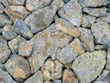 Moss Covered Rocks Photo