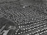 An Aerial View of the Levittown Housing Project in Pennsylvania Prints by Ed Latcham