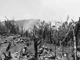 U.S. Troops Dug in on Hill 604, Villa Verde Trail, Fire on Japanese Positions over the Next Ridge Photo