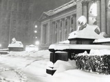 The Lion Statues at the New York Public Library Covered with Snow During the Record Snowfall Photo