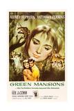 Green Mansions, Audrey Hepburn, Anthony Perkins, 1959 Plakater