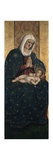 Madonna and Child, from Polyptych of St. James of Pergola Posters by Girolamo Nardini