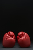 Pair of Red Boxing Gloves Photo