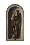Saint John the Baptist, Ca. 1550-80 Kunst af Paolo Veronese
