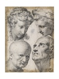 Four Studies of the Head Prints by Francesco Morandini