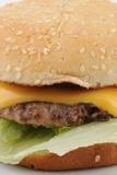 View of a Cheeseburger Prints