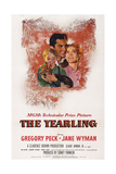 The Yearling, from Left: Claude Jarman Jr., Gregory Peck, Jane Wyman, 1946 Posters