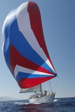 Sailing Boat in Yacht Race Photo