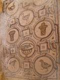 Late Roman Pavement Mosaic of Baskets and Birds in Fortress of Al-Hallabat, 4th C. Jordan Photo