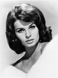 The Glory Guys, Senta Berger, 1965 Photo