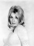 Sharon Tate, 1966 Photo