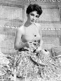 Elizabeth Taylor, Ca. Early 1950s Prints