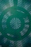 Green Lantern: Green Lantern Ring Symbol Posters