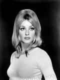 Sharon Tate, 1966 Photo