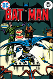 DC Batman Comics: Specialty Comic Book Covers Photo