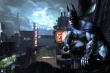 Batman Arkham City Prints