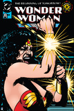 DC Wonder Woman Comics: 70's Animated Posters