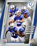 Indianapolis Colts 2014 Team Composite Photo