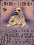 Border Terrier Plakietka emaliowana