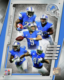 Detroit Lions 2014 Team Composite Photo