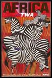 Africa - Trans World Airlines Fly TWA - Zebras Framed Giclee Print