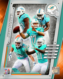 Miami Dolphins 2014 Team Composite Photo
